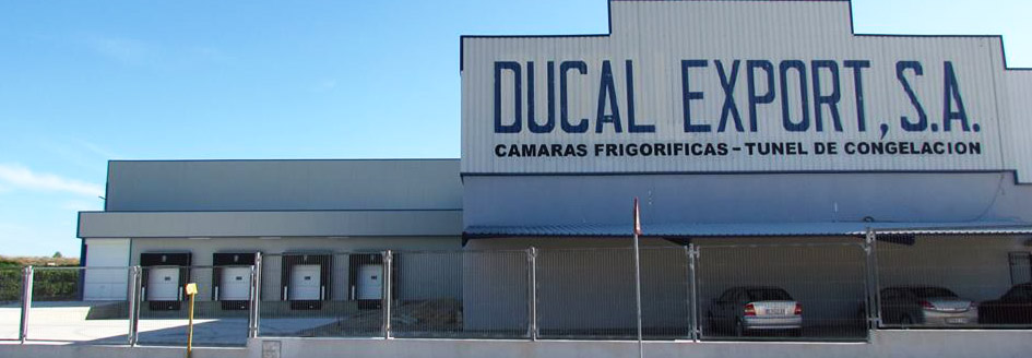ducal export descargas 2
