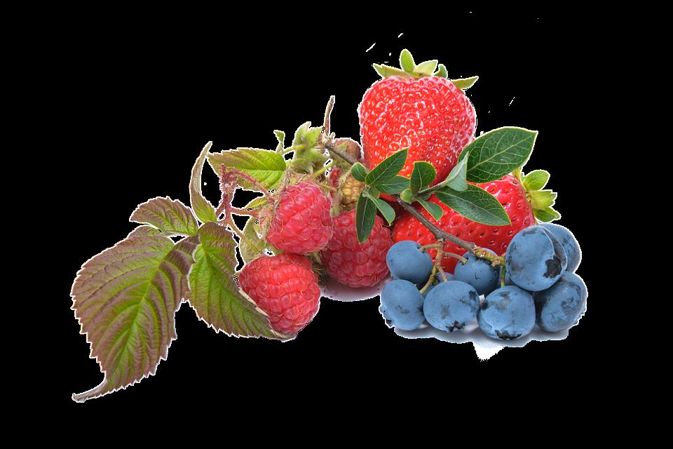 Fresa y arándano